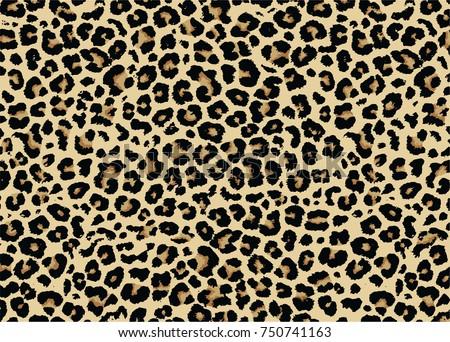 Leopard pattern design, vector illustration background Royalty-Free Stock Photo #750741163