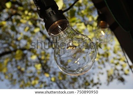 Close Up Shot of a Bulb against Blurred Background. #750890950