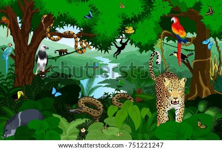 Rainforest with animals vector illustration. Vector Green Tropical Forest jungle with parrots, jaguar, boa, peccary, harpy, monkey, frog, toucan, anaconda and butterflies. Royalty-Free Stock Photo #751221247