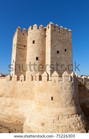 Cordoba in Andalusia, Spain (UNESCO) #75226303