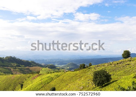 Rice field on mountain Maehongson province,North of Thailand. #752572960
