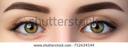 Close up view of beautiful brown female eyes. Perfect trendy eyebrow. Good vision, contact lenses, brow bar or fashion eyebrow makeup concept. #752634544