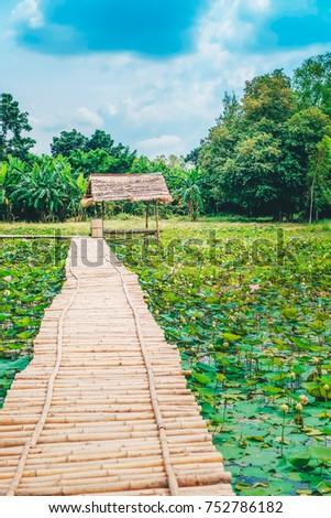 wood bridge and hut on the lotus pond. #752786182