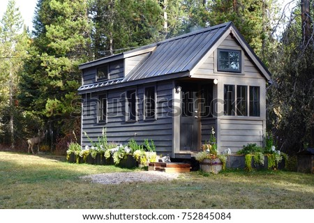 Off grid tiny house in the mountains #752845084