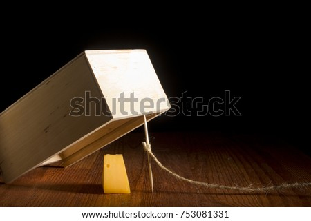 Wooden box as a trap on a black background Royalty-Free Stock Photo #753081331