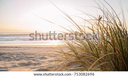 Gold Coast Australian Beach #753082696