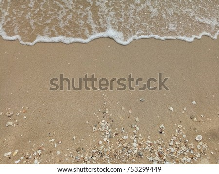 The waves beat at the beach with shell fragments. Nature background concept. #753299449