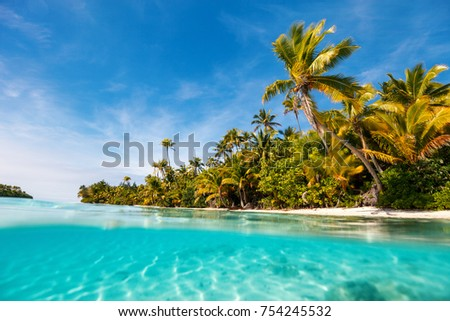 Stunning tropical island with palm trees, white sand, turquoise ocean water and blue sky at Cook Islands, South Pacific #754245532