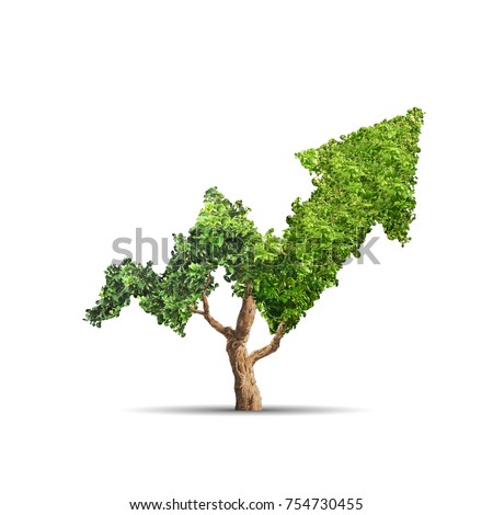 Tree grows up in arrow shape over white background. Concept business image