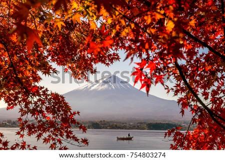 Mt. Fuji in autumn with red maple leaves at Kawaguchigo lake Japan #754803274