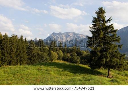 A idyllic landscape #754949521