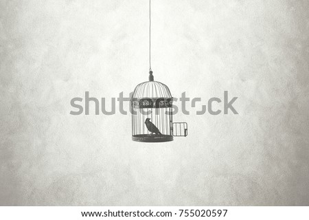 freedom minimal concept, bird in an open cage  Royalty-Free Stock Photo #755020597