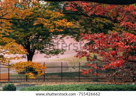 A football field close to Yoyogi park, famous place for holding events/ festivals, in the season of red leaf/ color changing leaves, Tokyo, Japan, November 2017 #755426662