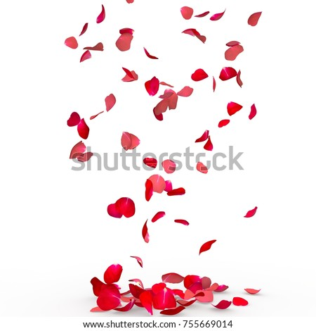 Rose petals fall to the floor. Isolated background Royalty-Free Stock Photo #755669014
