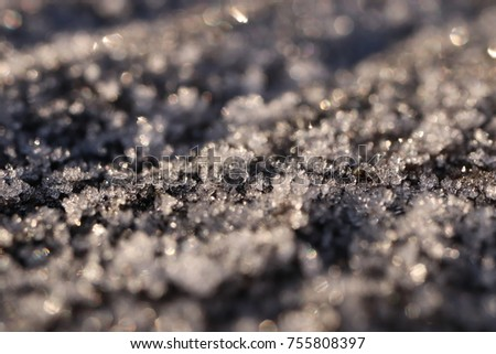 First Forest Frost Tree Surface with Frosty Crystals Macro Closeup Background #755808397