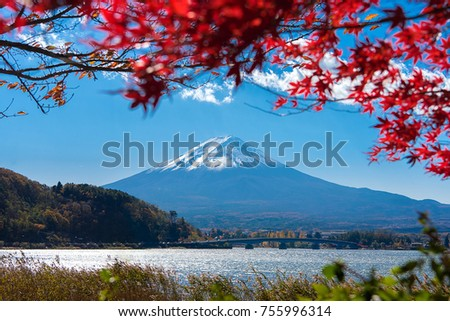 Colorful Autumn in Mount Fuji, Japan - Lake Kawaguchiko is one of the best places in Japan  #755996314