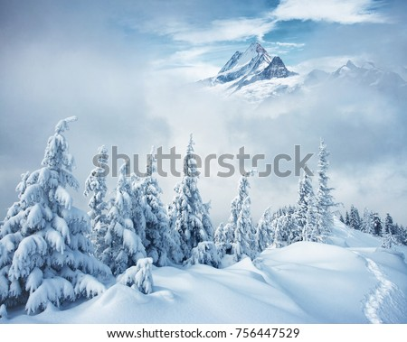 Creative collage. Frosty day on ski resort. Location Swiss alps, Switzerland, Europe. Picture of wild area. Moody weather. Explore the beauty of earth. Scenic image of hiking concept. Happy New Year!