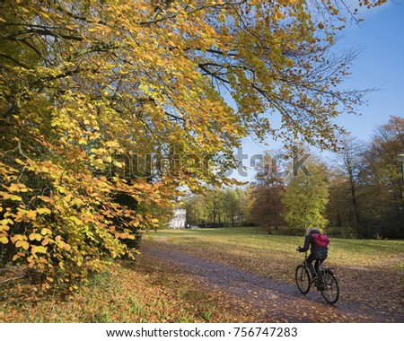 Driebergen, Netherlands, 13 november 2017: girl on bicycle in colorful autumn park on utrechtse heuvelrug in the netherlands #756747283
