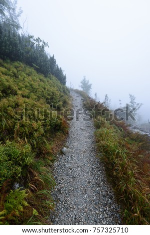 western carpathian mountain tourist trail track on rocky surface in  autumn covered in mist #757325710