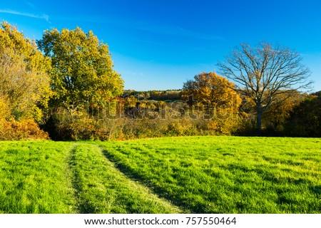 A beautiful late autumn November morning walk around Burwash East Sussex visiting Rudyard kiplings Batemans #757550464