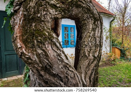Colorful old Anabaptist house in Velke Levare (Slovakia) #758269540