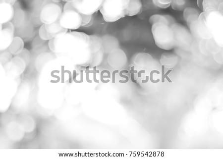 white blurred backdrop of nature, circle white wallpaper, gray bokeh background. #759542878