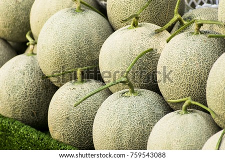 Cantaloupe melons in market ,Cantaloupe melons background,cantaloupe melon on hay grass background.Rock melon sell in the market. #759543088
