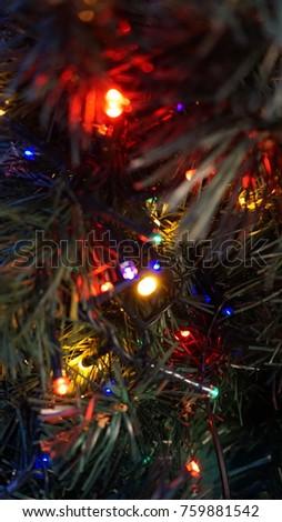 Merry Christmas in December #759881542
