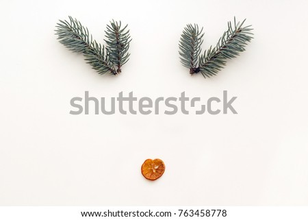 Christmas concept. Deer made from dried mandarin and  fir branches on white background. Flat lay, top view #763458778