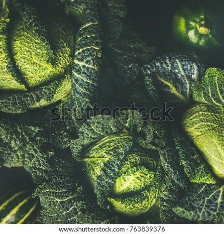 Raw fresh green cabbage texture and background, top view over dark background, selective focus, square crop #763839376