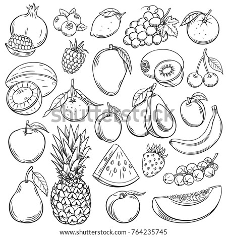 Vector sketch fruits and berries icons set. Decorative retro style collection hand drawn farm product for restaurant menu, market label. Mango, blueberry, pineapple, mandarin and etc. #764235745