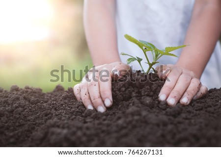 Child hand planting young tree on black soil as save world concept #764267131
