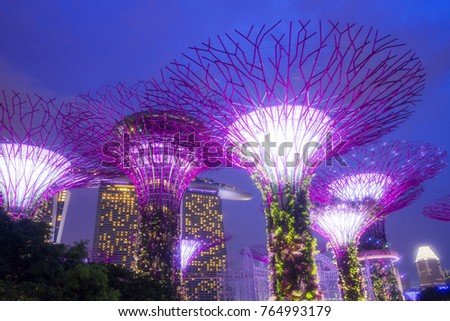 SINGAPORE ,November 25,2017 : Night view of Supertree at Gardens by the Bay and cityscape in Singapore #764993179