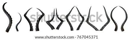 Set of isolated horns Royalty-Free Stock Photo #767045371