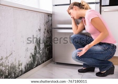Close-up Of A Shocked Woman Looking At Mold On Wall #767180011