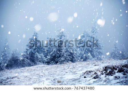 Christmas and New Year background with winter trees in mountains covered with fresh snow - Magic holiday background #767437480