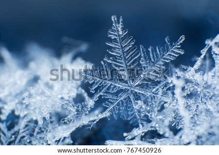 Snowflake on a blue background  Royalty-Free Stock Photo #767450926
