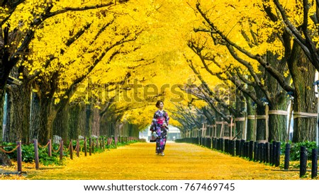 Beautiful girl wearing japanese traditional kimono at row of yellow ginkgo tree in autumn. Autumn park in Tokyo, Japan. #767469745