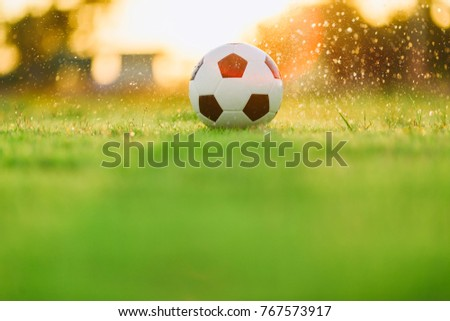 A ball on the green grass field for soccer football game under the sunset ray light and rain. Picture with space area.