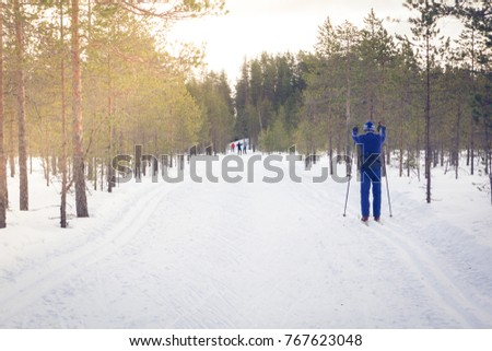 winter forest, skiers for a walk in the woods #767623048