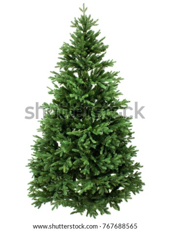 Green Pine, christmas tree isolated on white closeup #767688565