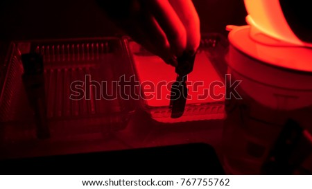 Retro print photos in the darkroom. Darkroom to develop film and create photos using different chemicals. Drying photos on rope. The manual process printingof old photos
