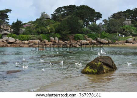 Ploumanach in Brittany, high place of the pink granite coast known for its big chaos of stone. The beach of St Guirec and the lighthouse is Min Ruz characterize this place.  #767978161