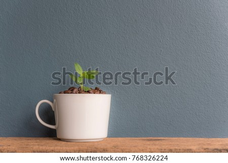 Small trees in white glass with coffee beans placed on a wooden blue background. #768326224