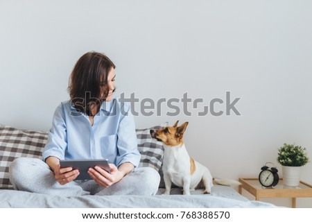 Beautiful brunette female in pyjamas sits on bed in bedroom with her jack russell terrier dog, holds tablet computer, enjoys morning weekend, watches video online, has good relationships with pet #768388570