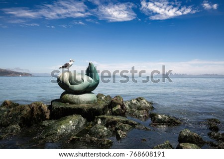 SAN FRANCISCO, USA - JULY 15, 2017: The Seagull and the sculpture of the seal in the background of the waterfront in San Francisco in California #768608191