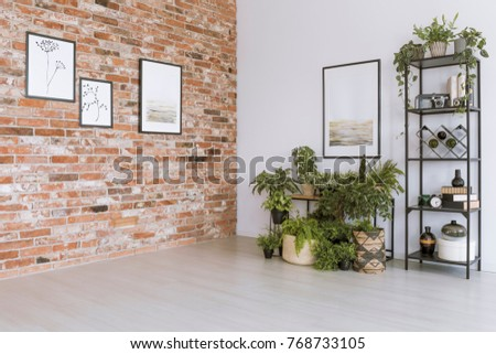 Plants under painting on white wall in simple living room with pictures on red brick wall Royalty-Free Stock Photo #768733105