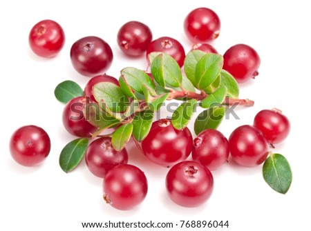 Ripe cranberries and green cranberry leaves on the white background. #768896044