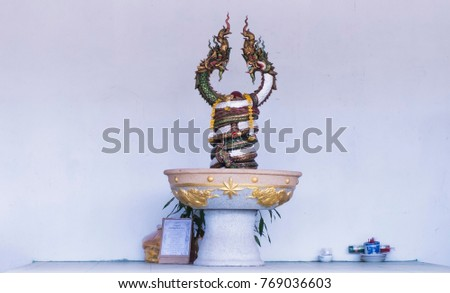 Two Naga statue in pot on the cement floor. white concrete background. #769036603