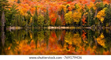 Fall colour reflected in the still waters of Canisbay Lake, Algonquin Provincial Park, Ontario, Canada